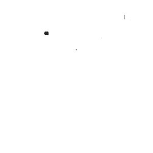 pivo-black-ale